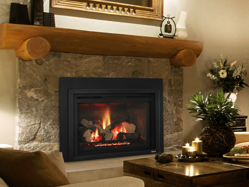 QFI35FB Gas Insert by Quadra-Fire