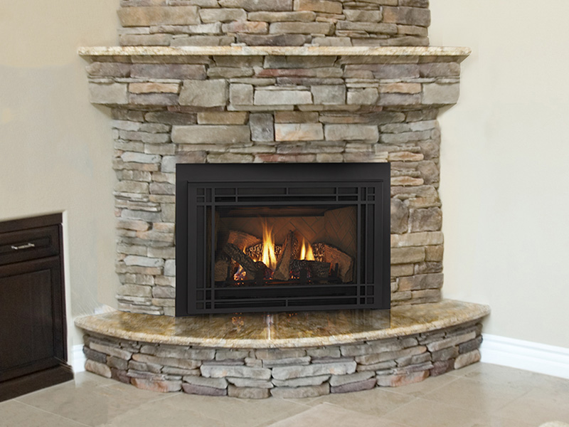 QFI35 Gas Insert by Quadra-Fire